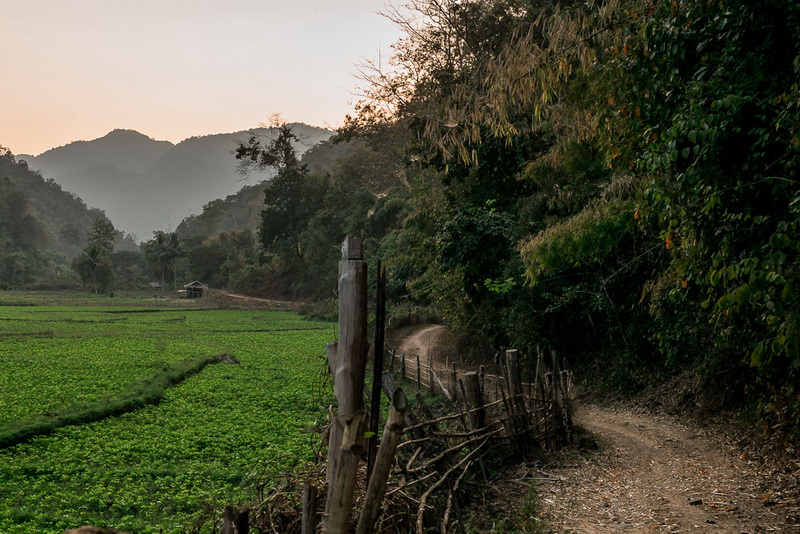 salawin national park, salawin national park in mae hong son, national park in mae hong son