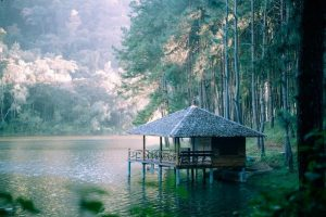 thampla-phasuea waterfall national park, tham pla-pha suea waterfall national park, tham pla cave-pha suea waterfall national park, tham pla-namtok pha suea national park, tham pla - namtok pha suea national park