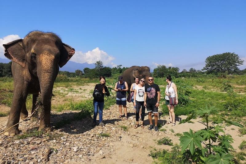thom pai elephant camp, pai elephant camp, thom elephant camp