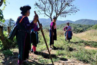 lisu people, lisu, lisu hilltribe, lisu tribe, lesor people, lesor, lesor hilltribe, lesor tribe, le sor people, le sor, le sor hilltribe, le sor tribe